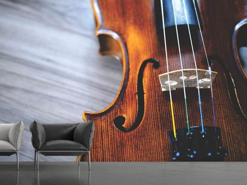 Fotomurale Close up violino 2