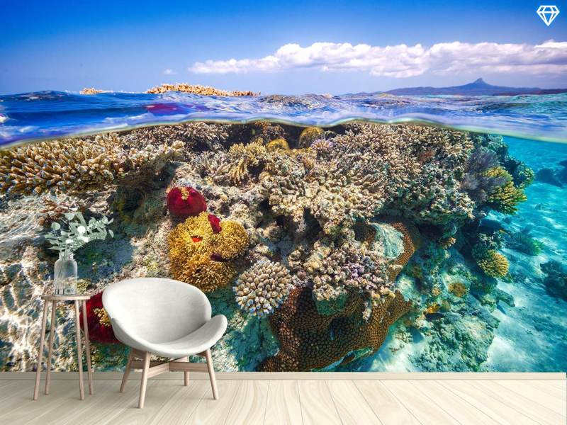 Photo Wallpaper Mayotte - the Reef