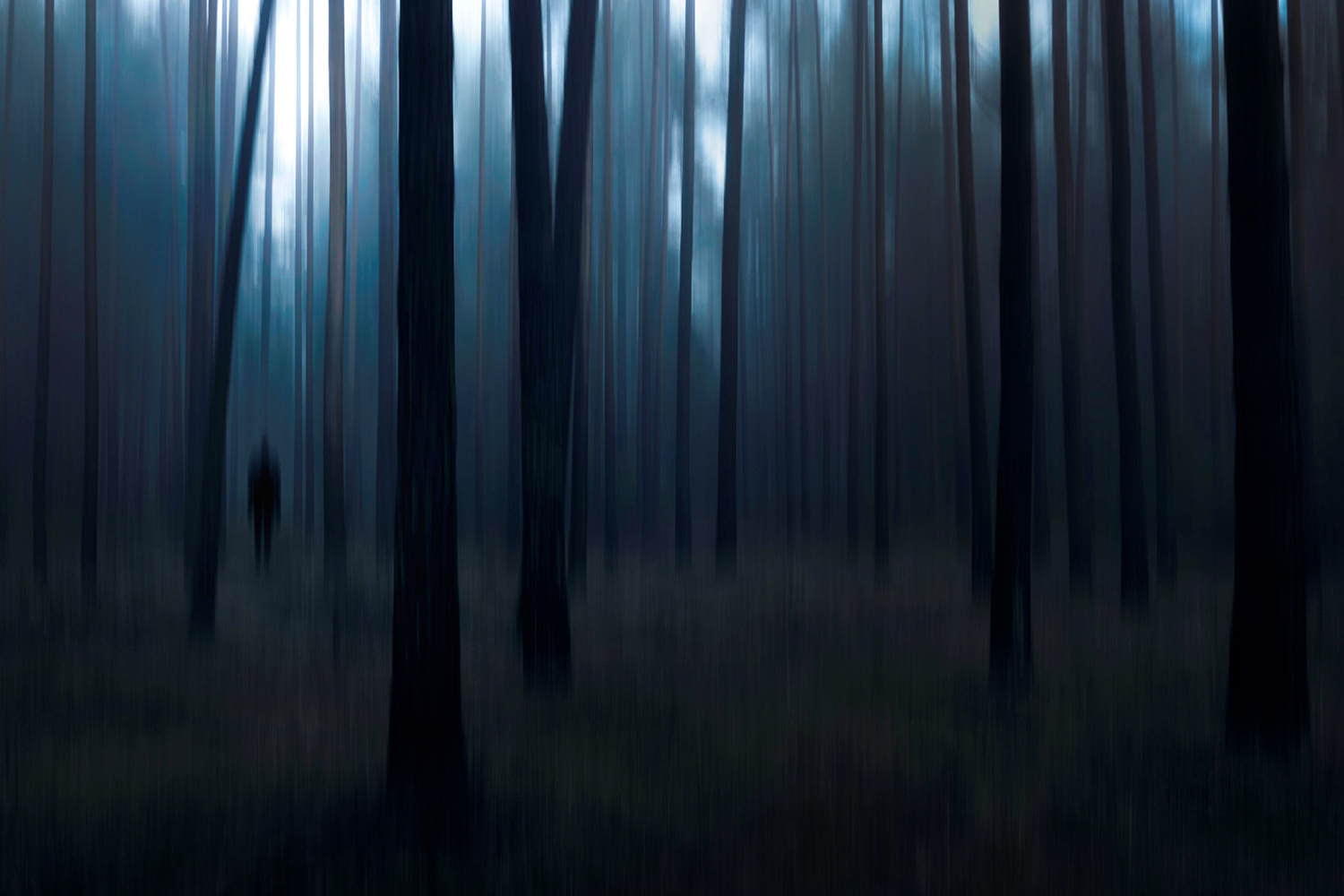 Photo Wallpaper Man In The Forest