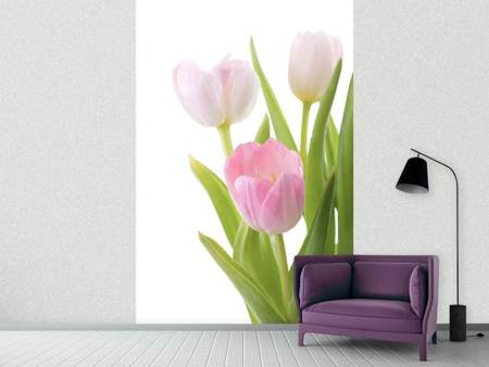 Papier peint photo Le trio de tulipes