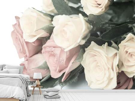 Papier peint photo Rose romantique