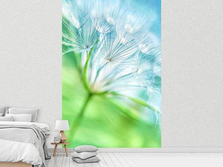 Photo Wallpaper Macro Dandelion