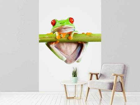Photo Wallpaper Frog Acrobatics