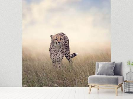 Photo Wallpaper The Cheetah